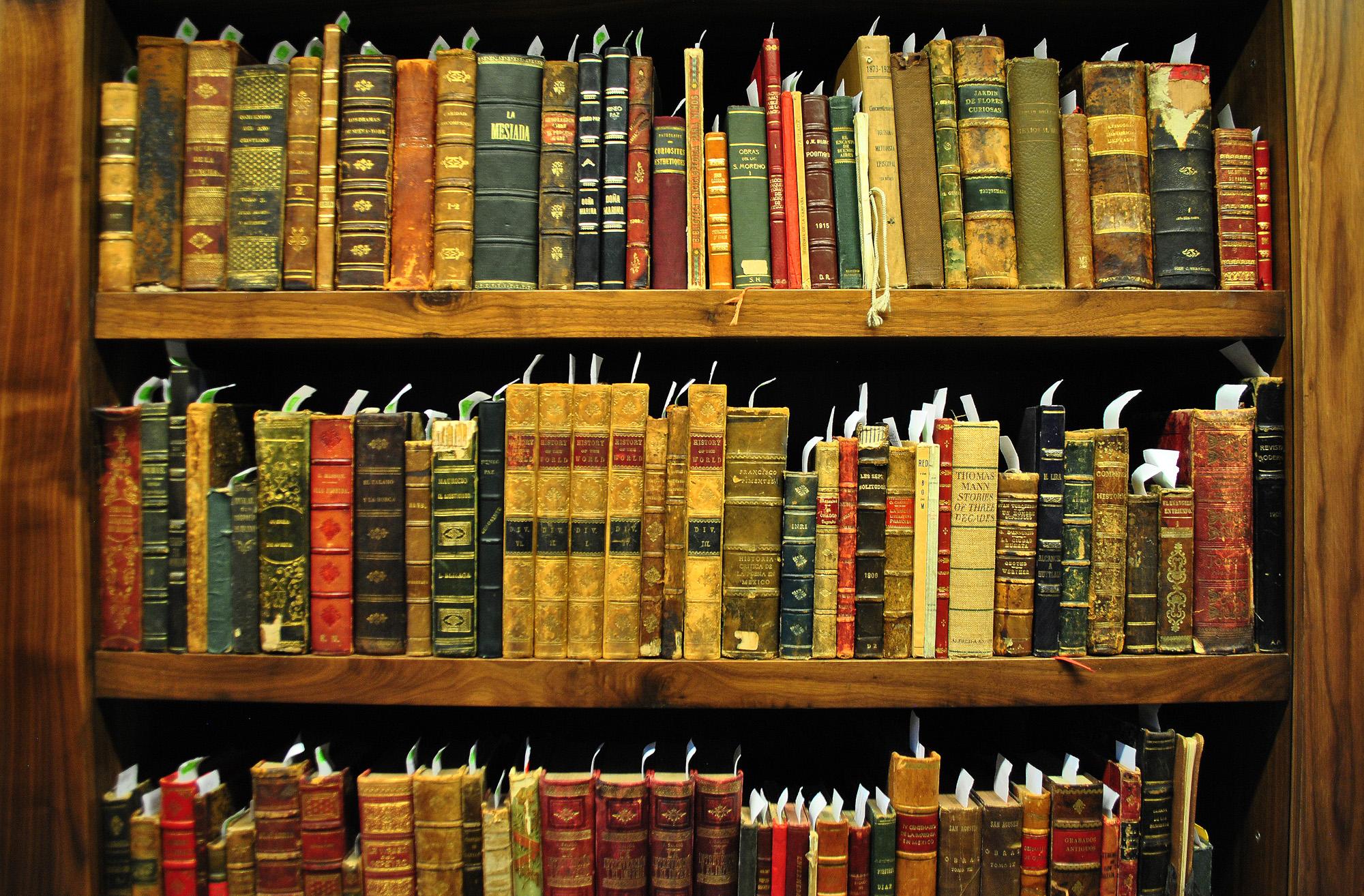 Biblioteca Giuseppe Medici - INSOR